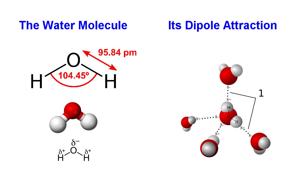 the characteristics of the molecules of water in chemistry Water molecules exist in two different forms with almost identical physical properties for the first time, researchers have succeeded in separating the two forms to show that they can exhibit .